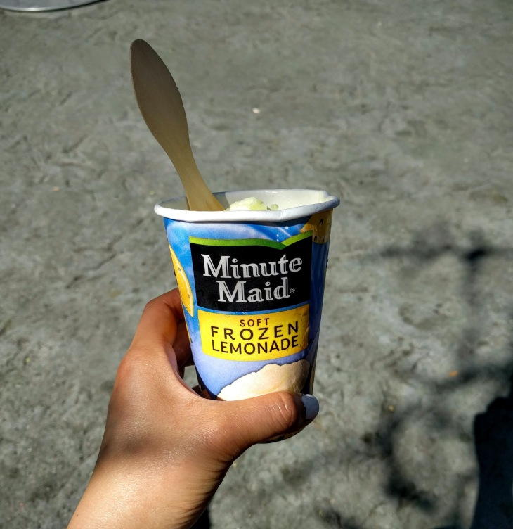 Disneyland - Minute Maid Soft Frozen Lemonade